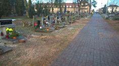 Zeleň hřbitov Dražická