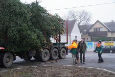 Vánoční strom pro Benátky