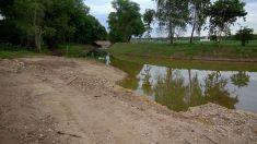 Revitalizace nivy řeky Jizery