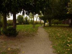 Úprava chodníku a zeleně v parčíku F. Bárty 2013