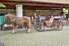 Benátecký zámek plný pohádek aneb cesta pohádkovým parkem